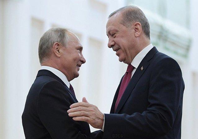 普京在俄土伊峰会开始前与埃尔多安举行会谈
