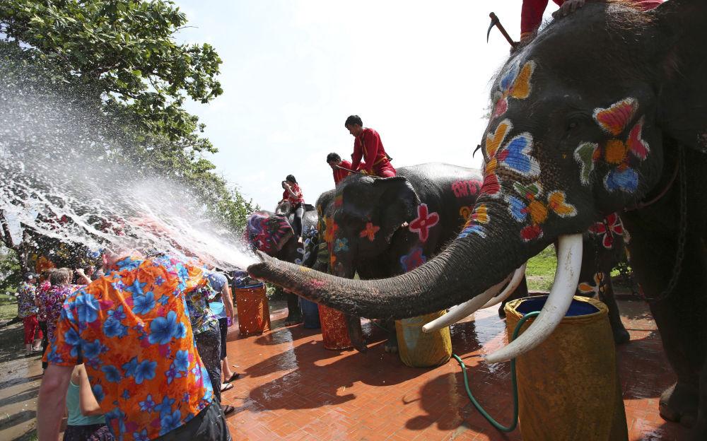 泰国庆祝新年