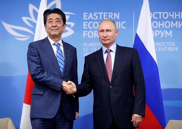日本专家:日俄两国若忽略岛屿争端于12月签署和平条约
