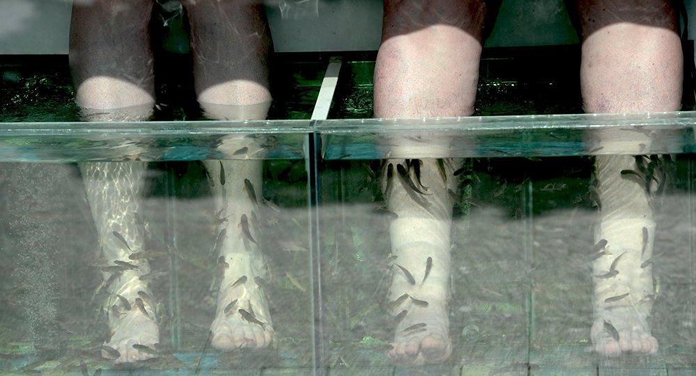 """澳大利亚女孩泰国体验""""鱼修脚"""" 结果惨失脚趾"""