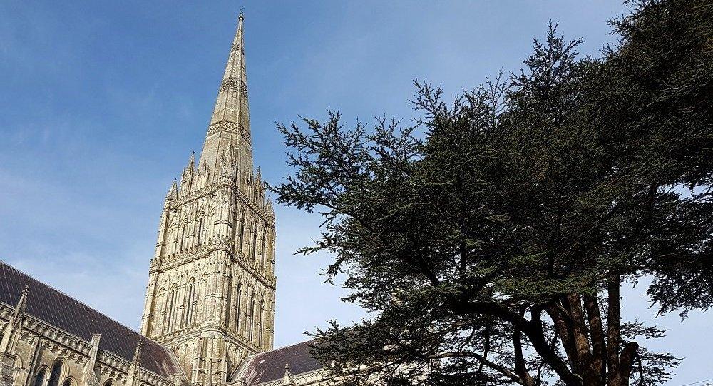 猫途鹰网关闭了对索尔兹伯里教堂的讨论功能