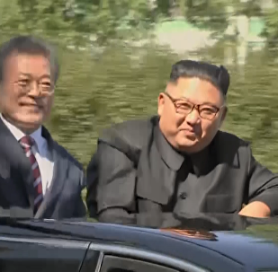 朝韩最高领导人同车巡视平壤