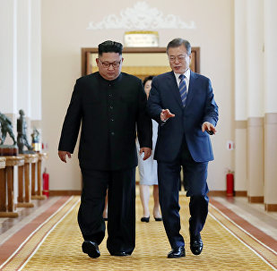 韩国专家:为什么应当说服金正恩去华盛顿?