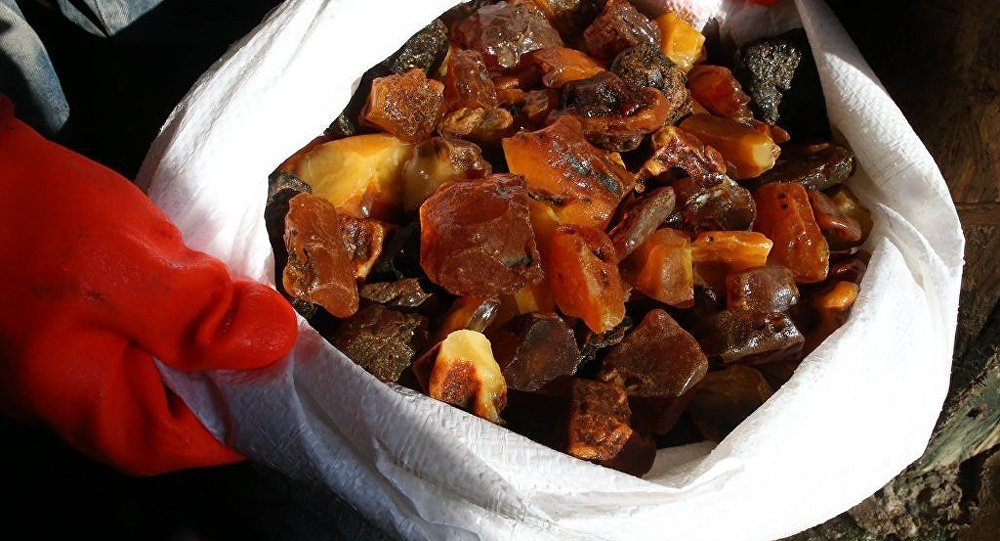 俄加里寧格勒開採到一塊重達1.8公斤的琥珀原石