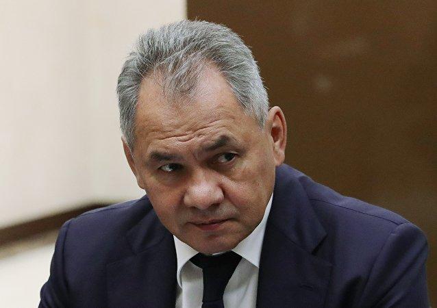 俄国防部长谢尔盖·绍伊古
