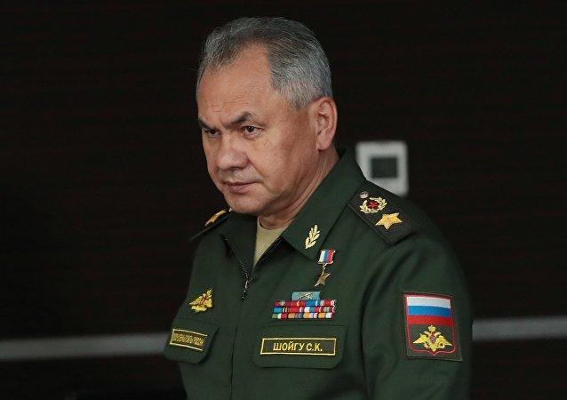 俄防长:俄将经常在地中海水域举行演习