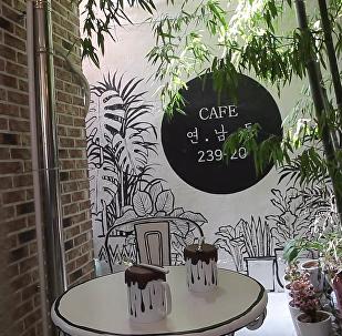 在首尔开设了一家彩绘咖啡馆