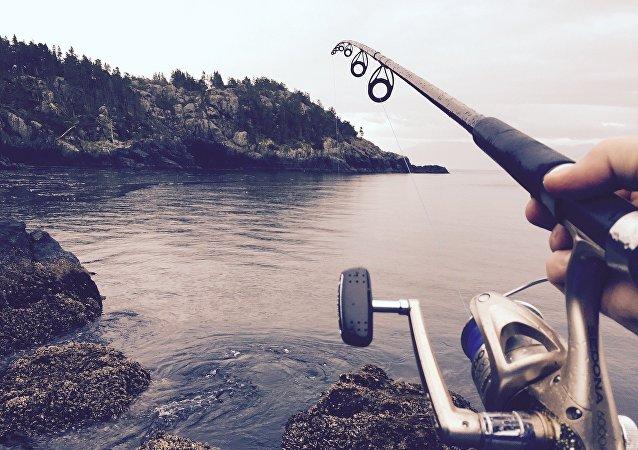 科学家:不要把钓到的鱼放生