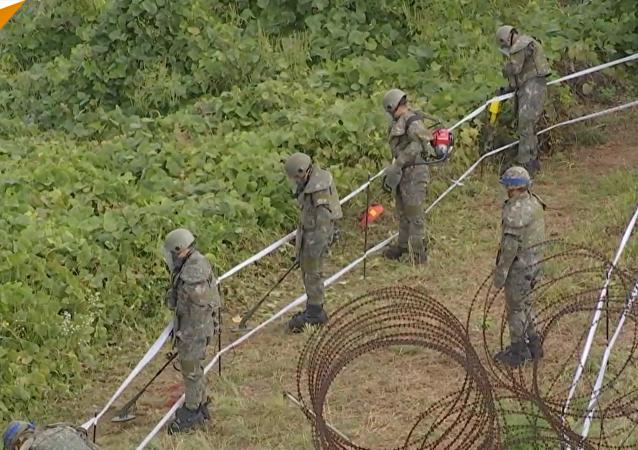 朝韩开始沿边境移除地面炸弹