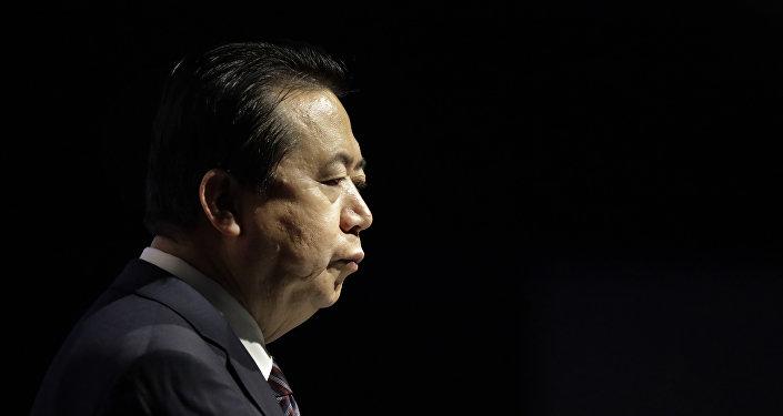 国际刑警组织秘书长将不会帮助调查孟宏伟失踪事件