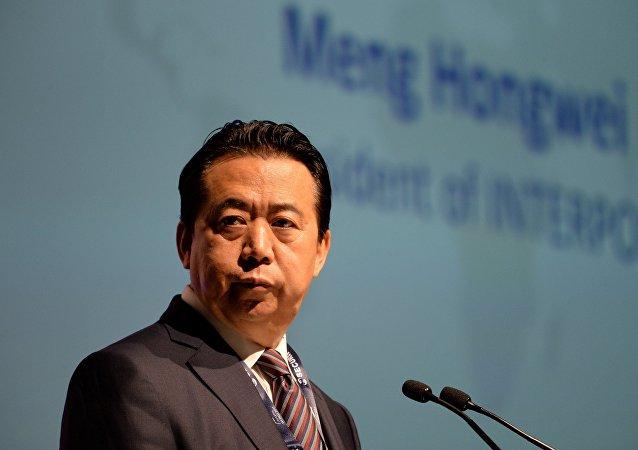 為何國際刑警組織主席辭職未出中國法律範圍