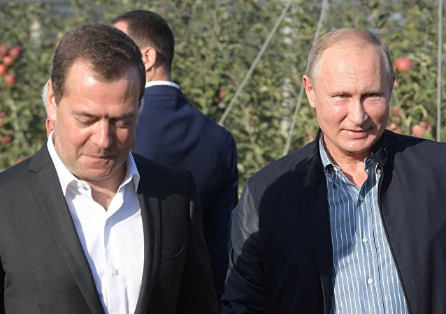 普京:近期将与埃及总统举行会晤