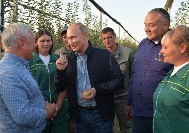 普京与俄罗斯哥萨克乡镇企业Rassvet的员工