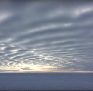 """科学家录到南极冰川""""歌声"""""""