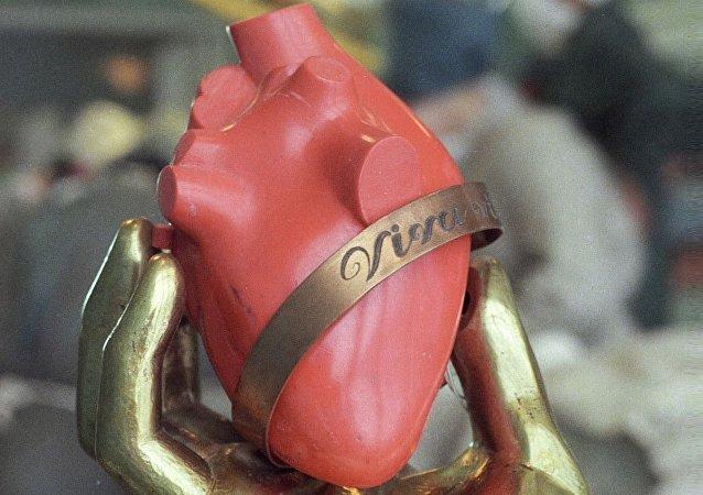 人心脏模型