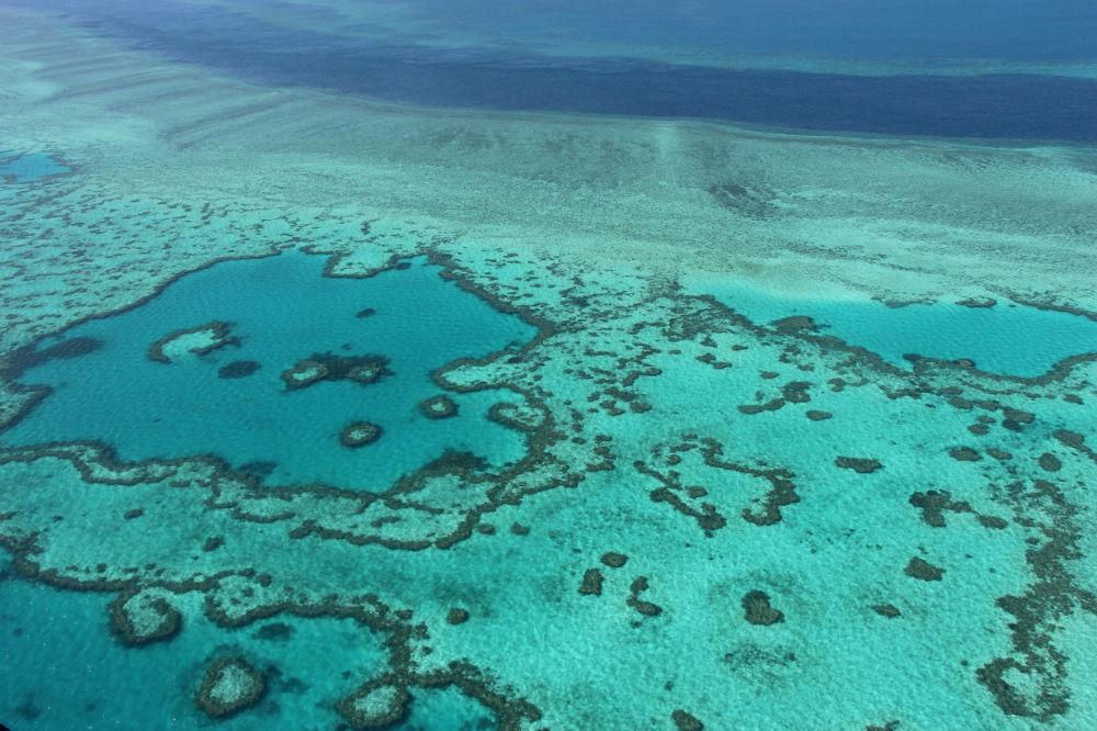 澳大利亞大堡礁
