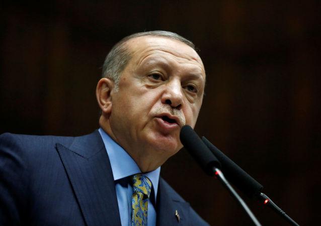 土耳其总统:土美两国就叙利亚局势达成共识
