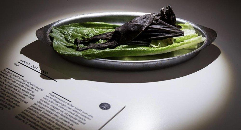 惡心食品博物館:東南亞美味蝙蝠乾