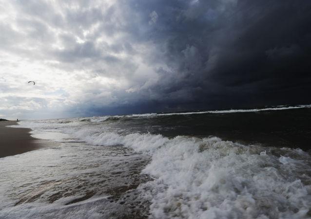 波羅的海海底發現有1萬年曆史的沈沒森林