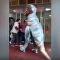 一爸爸獨出心裁穿恐龍服去幼兒園接女兒