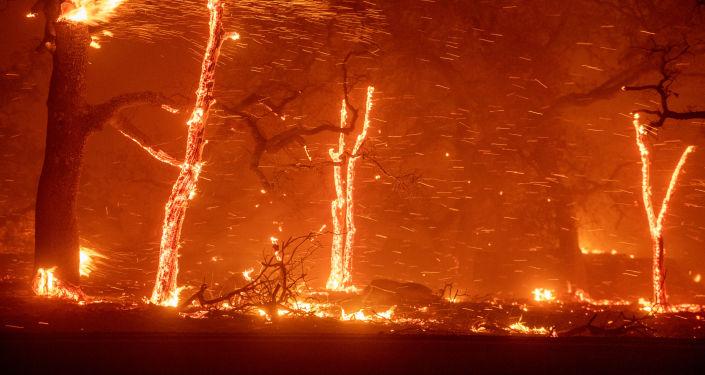 美國加州洛杉磯因森林火災宣佈疏散馬里布市居民