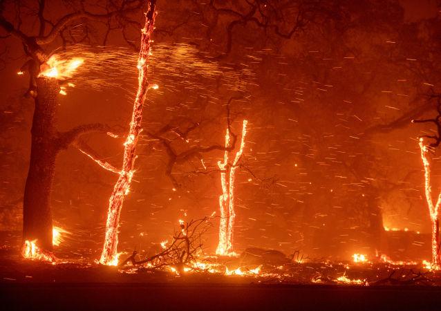 美國加州火災造成的死亡人數升至71人 一千多人失蹤