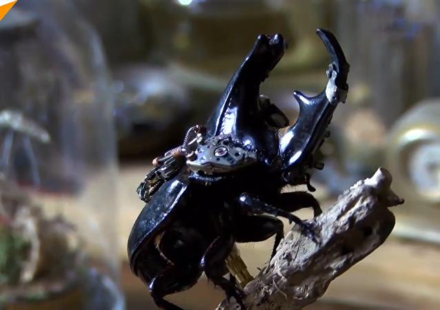 中國年輕藝術家變昆蟲為蒸汽朋克藝術