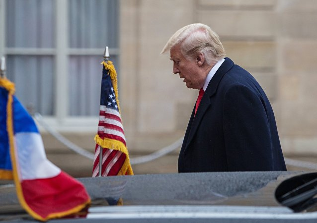 Дональд Трамп на мероприятиях в Париже в честь 100-летия окончания I мировой войны