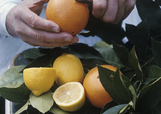 韓國總統送給朝鮮的柑橘將發給青少年學生和平壤市民