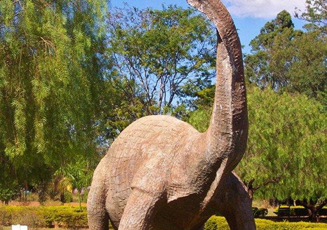 巨型恐龙的遗骸(资料图片)