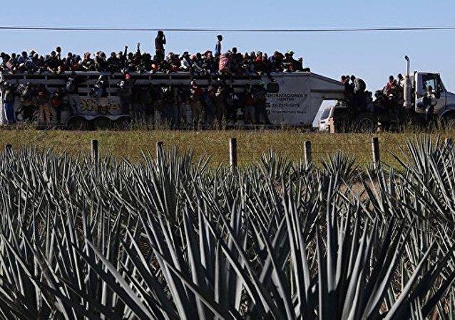 """首批""""大篷车移民""""已抵达美墨边境"""