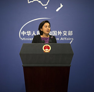Chinese foreign ministry spokeswoman Hua Chunying speaks during a press briefing at the Ministry of Foreign Affairs building in Beijing