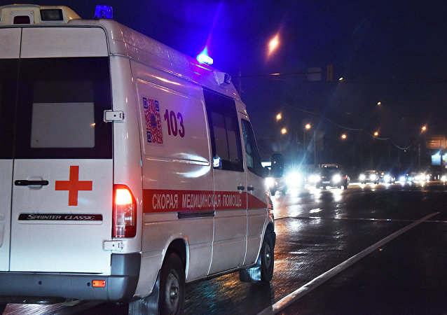 莫斯科高爾基公園天橋垮塌造成5人受傷