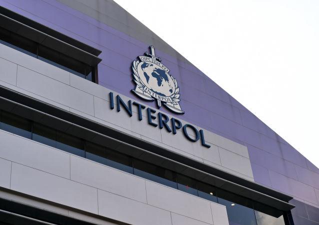 国际刑警组织(新加坡)