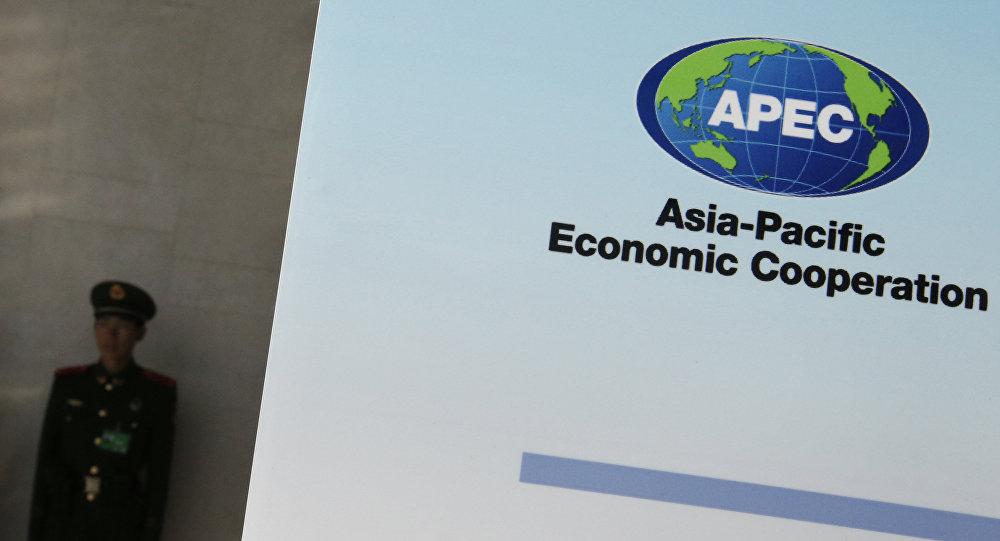 亚太经合组织峰会(图片资料)