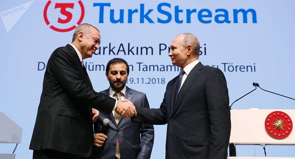 普京讲话被掌声打断 他提醒埃尔多安是谁发明了土耳其流
