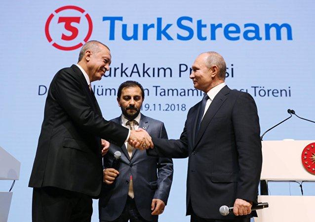 普京講話被掌聲打斷 他提醒埃爾多安是誰發明瞭土耳其流