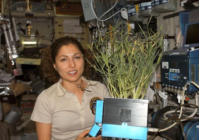 太空游客在国际空间站