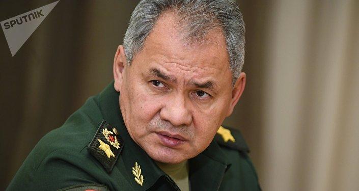 """俄国防部长:""""伊斯兰国""""在阿富汗扩充势力  将该国作为扩张跳板"""
