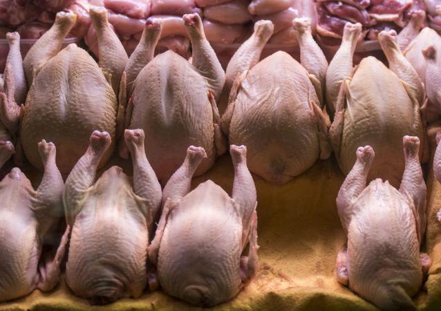 白俄罗斯首批200吨禽肉运抵中国