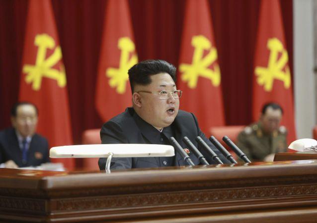 俄副外長:金正恩訪俄問題仍在議程內