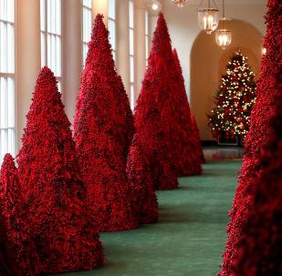 白宫圣诞装饰曝光
