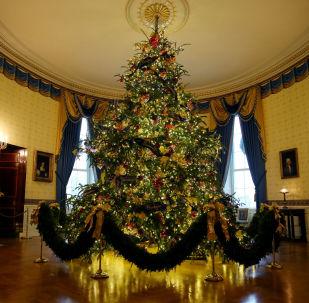 白宮聖誕裝飾曝光