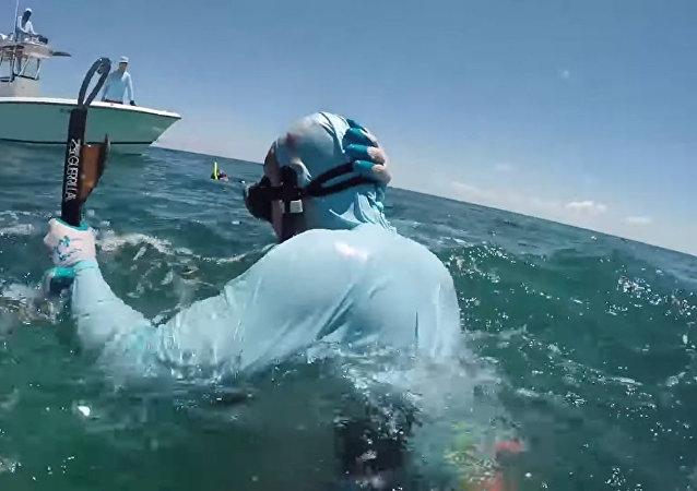 鯊魚咬了在巴哈馬水下捕獵人的頭部一口