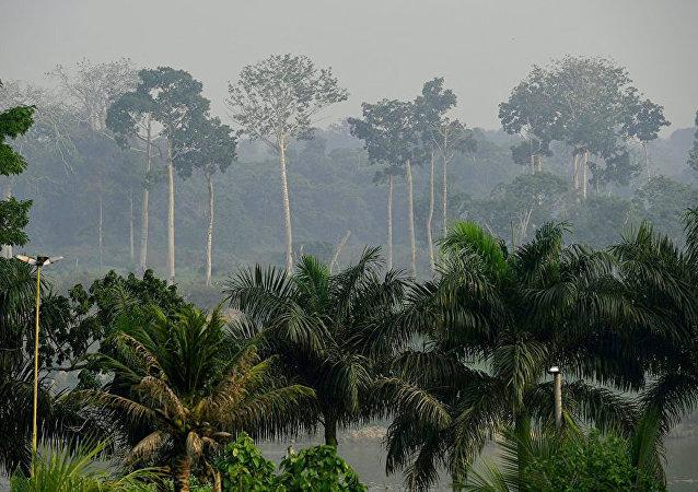 俄工兵在老挝排雷32公顷多丛林