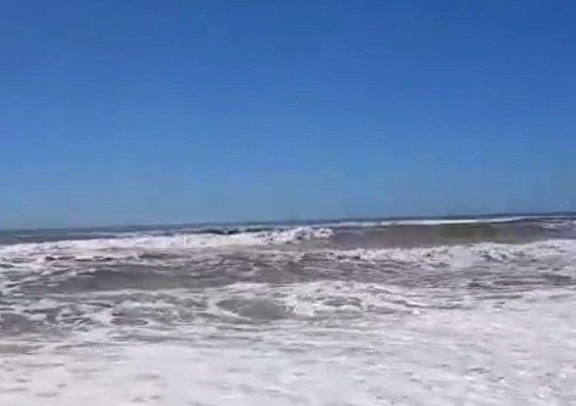 """阿根廷渔民用钓鱼竿""""抓住""""了溺水女孩"""