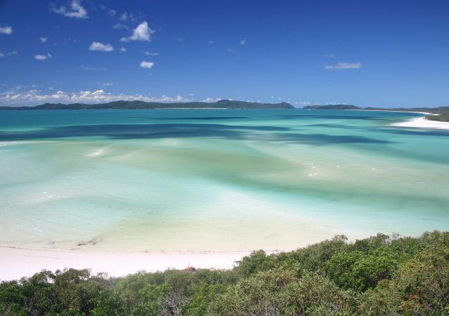 澳大利亚的怀特黑文海滩