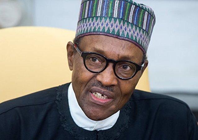尼日利亚总统称关于其替身在波兰现身的说法是谣言