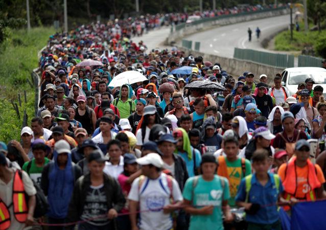 400余名非法移民从墨西哥进入美国