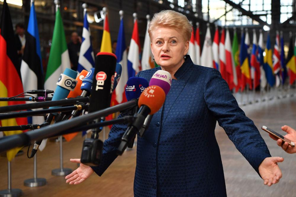 立陶宛總統達利婭·格里包斯凱特